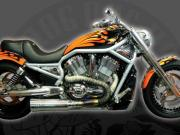 Picture of a custom built orange V-Rod, side view, full bike