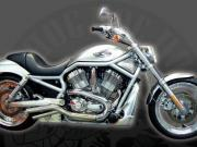 Picture of V-Rod, side view, full bike